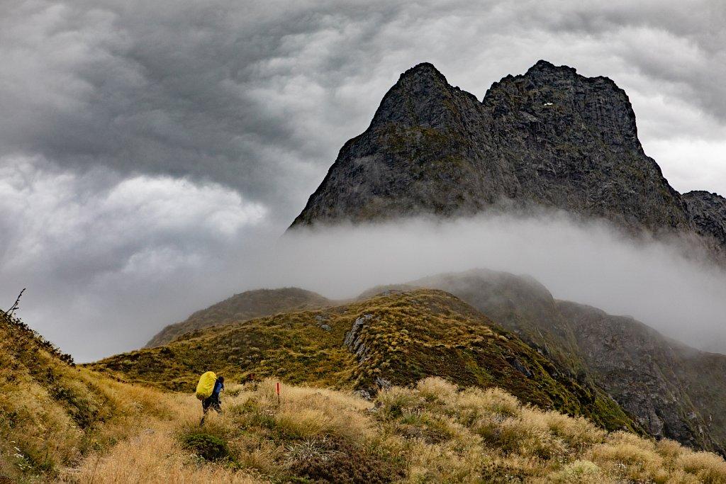 001-Neuseeland-9754.jpg